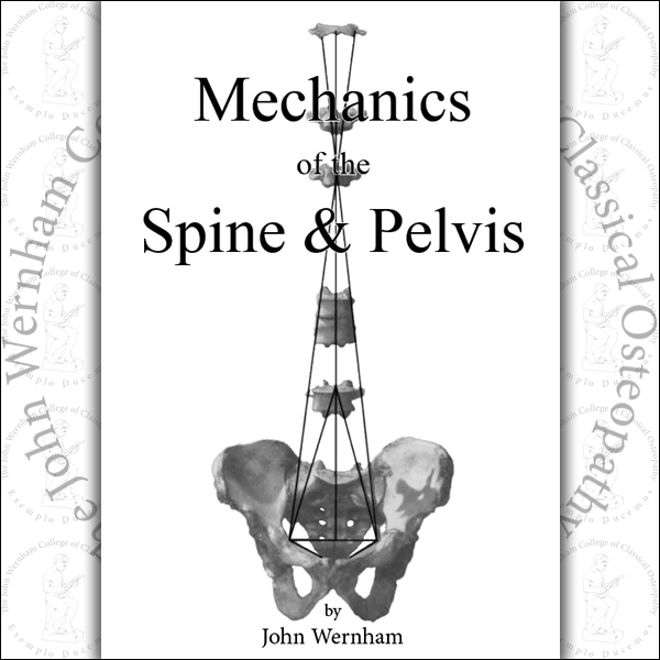 Mechanics of the Spine and Pelvis